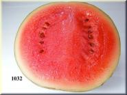 Wassermelone 1/2