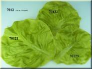 lettuce leaf  Set of three
