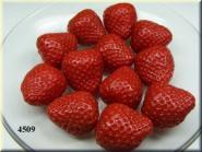 Erdbeere 1/2 ohne Spinne (12 St.)