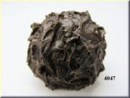 truffle Wagner (3 pcs.)