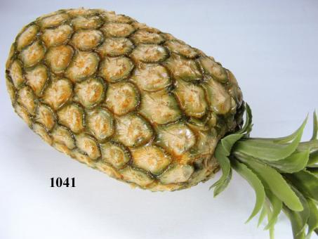Ananas-Frucht groß