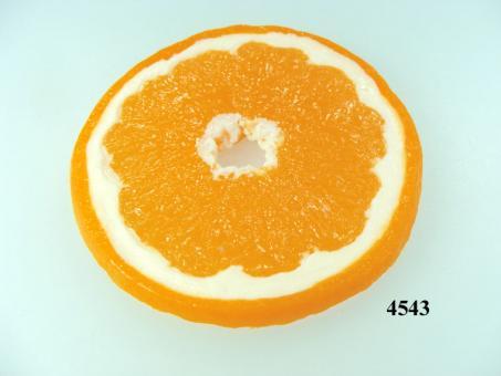Orangen-Scheibe