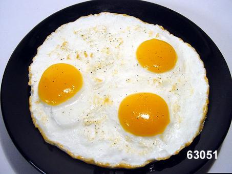 fried egg 3-fold